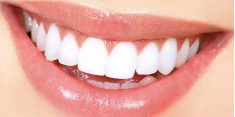 لثه مهمترین بخش برای سلامت دهان و دندان